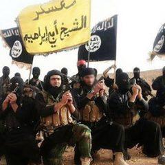 טרור מהפכני: דעאש והמהפכה האיסלמיסטית / ענבר סרי
